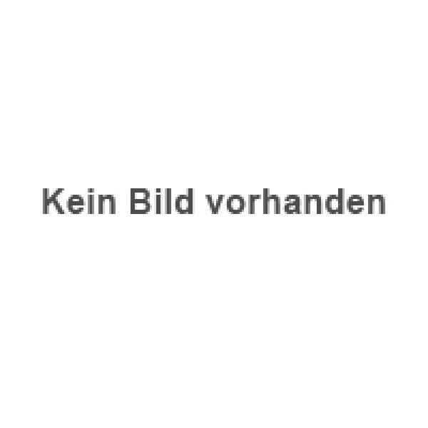 werner gehrig | nutzfahrzeug kaufen deutschschweiz | neuwagen